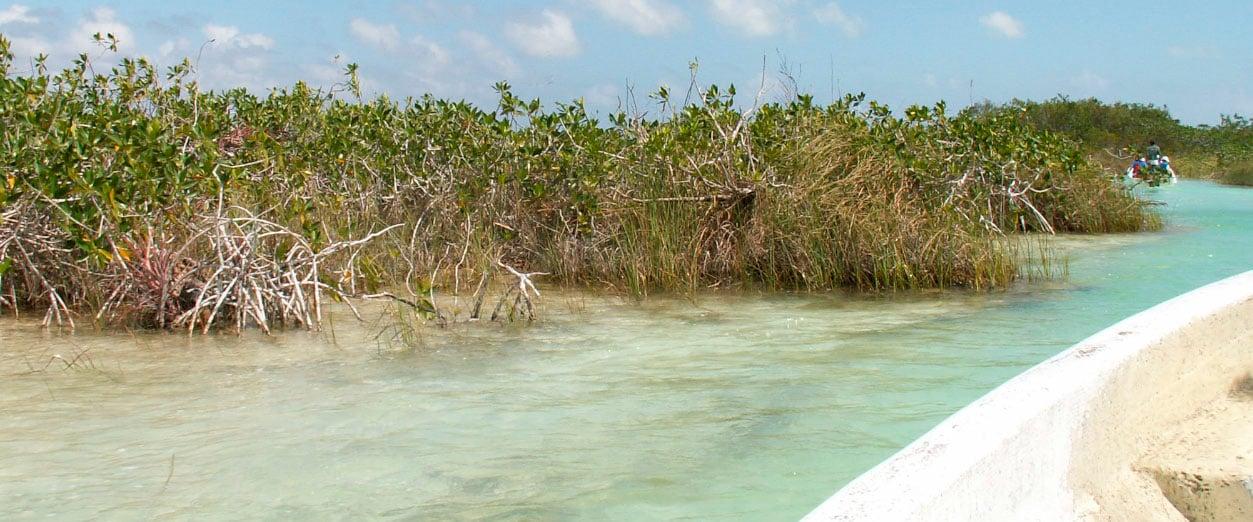 Blog_pesca_0005_Canal de yucatan
